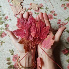 Autumn red 2019