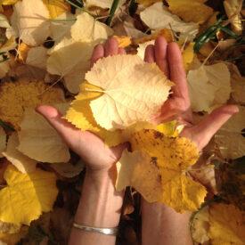 Autumn loving 2019